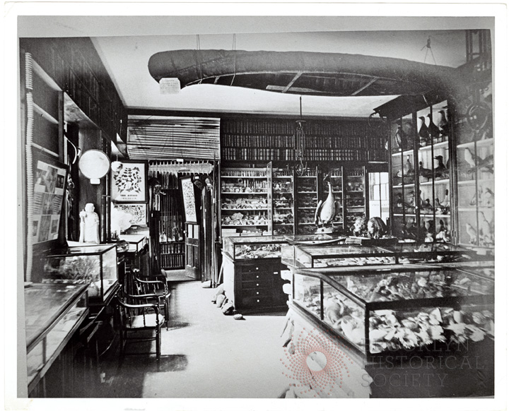 The Long Island Historical Society's earliest collections in the 1860s